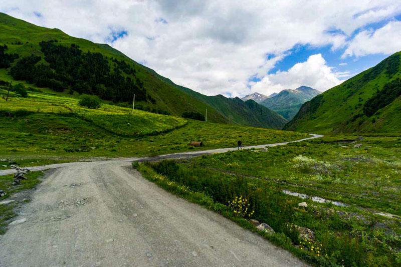 دانستنی های گرجستان - طبیعت گردی در دره تروسو